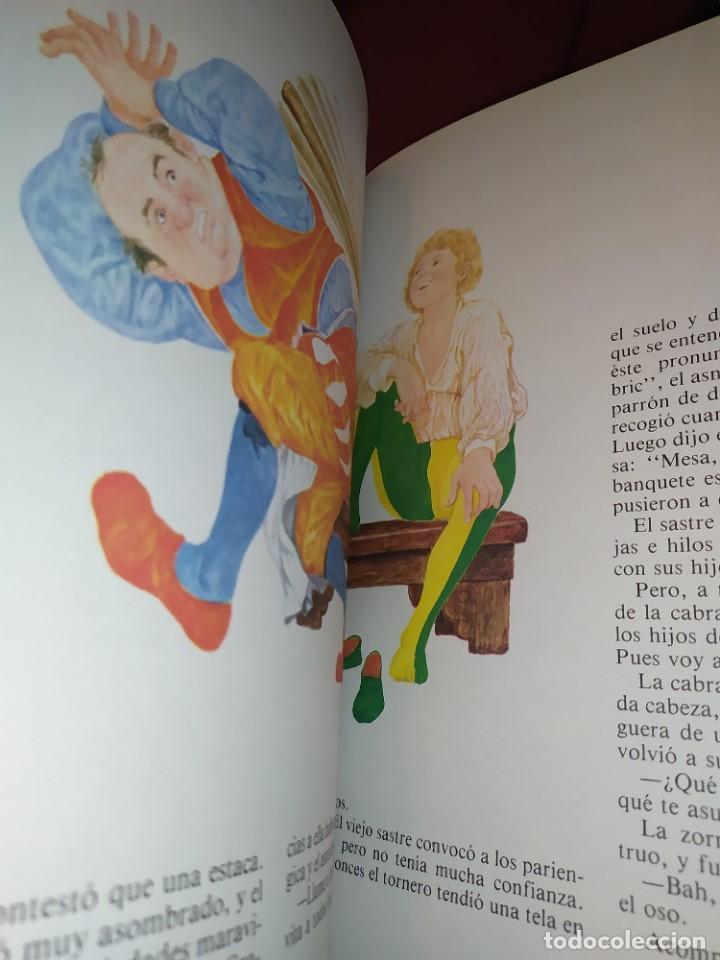 Libros de segunda mano: CUENTOS DE GRIMM TUS AMIGOS 1970 BENVENUTI OCA ORO JUAN SUERTE PICO TORDO REY RANA BREMA VERDEZUELA - Foto 7 - 278302348