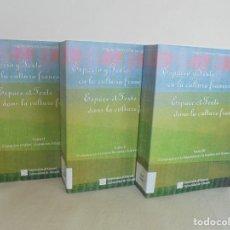 Libros de segunda mano: ANGELES SIRVENT RAMOS. ESPACIO Y TEXTO EN LA CULTURA FRANCESA. VER FOTOGRAFIAS ADJUNTAS.. Lote 69952145