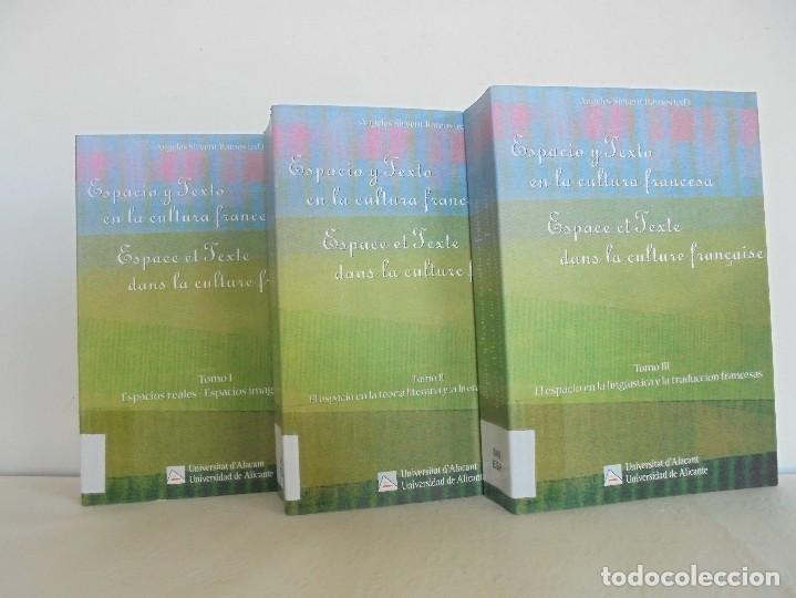 Libros de segunda mano: ANGELES SIRVENT RAMOS. ESPACIO Y TEXTO EN LA CULTURA FRANCESA. VER FOTOGRAFIAS ADJUNTAS. - Foto 2 - 69952145
