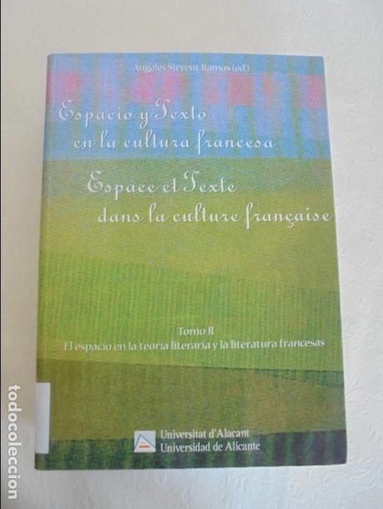 Libros de segunda mano: ANGELES SIRVENT RAMOS. ESPACIO Y TEXTO EN LA CULTURA FRANCESA. VER FOTOGRAFIAS ADJUNTAS. - Foto 26 - 69952145