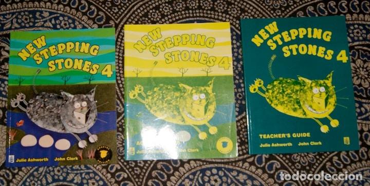 NEW STEPPING STONES 4 (Libros de Segunda Mano - Cursos de Idiomas)