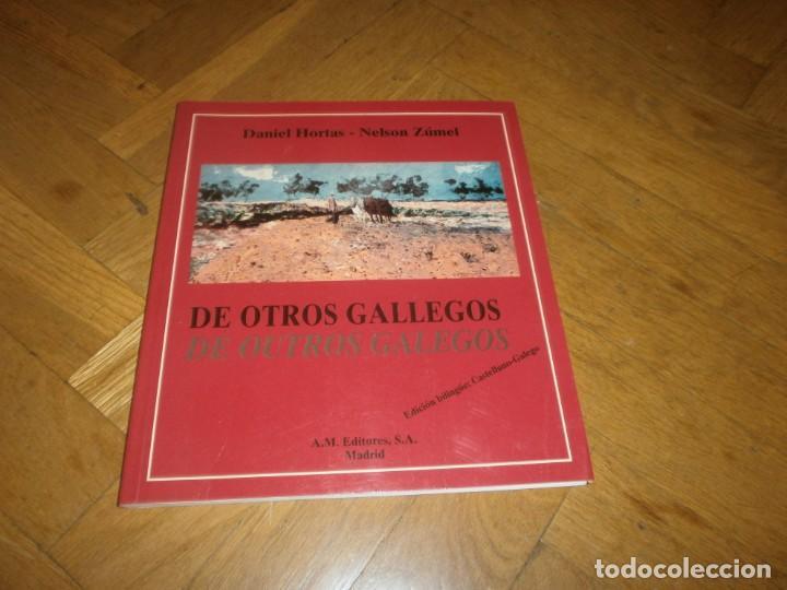DE OTROS GALLEGOS OUTROS GALEGOS EDIC. BILINGUE DANIEL HORTAS - NELSON ZÚMEL AM EDITORES MADRID 1998 (Libros de Segunda Mano - Ciencias, Manuales y Oficios - Derecho, Economía y Comercio)