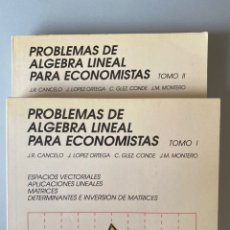Libros de segunda mano: PROBLEMAS DE ALGEBRA LINEAL PARA ECONOMISTAS. TOMO I Y II - TEBAR FLORES. Lote 210551547
