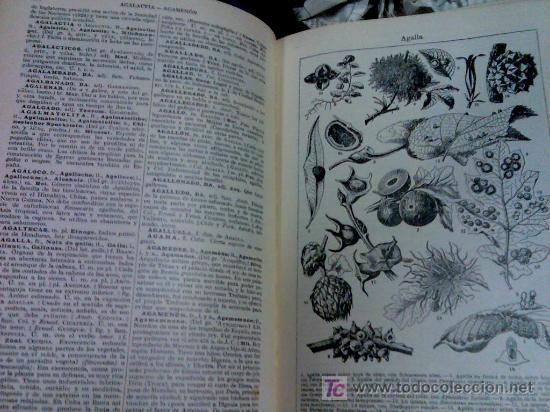 Diccionarios de segunda mano: DICCIONARIO ENCICLOPÉDICO DE ESPASA CALPE AÑO 1957 8 tomos - Foto 8 - 27640061
