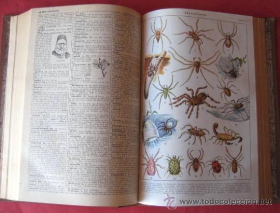 Diccionarios de segunda mano: DICCIONARIO ILUSTRADO LENGUA ESPAÑOLA - SOPENA 1953. TOMO 1.. ENVIO PAQUETE AZUL GRATIS¡¡¡ - Foto 4 - 14186852