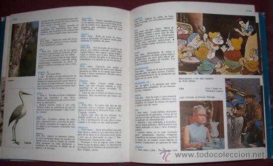 Diccionarios de segunda mano: Detalle del interior - Foto 2 - 18498284