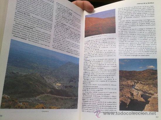 Diccionarios de segunda mano: Diccionario de la naturaleza. Hombre, Ecología, Paisaje - Foto 9 - 33336896