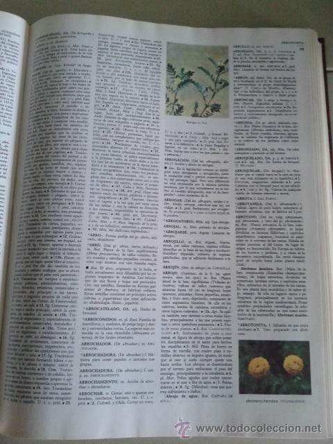 Diccionarios de segunda mano: DICCIONARIO ENCICLOPEDICO SALVAT UNIVERSAL -- 9 TOMOS -- SALVAT -- - Foto 4 - 45616322