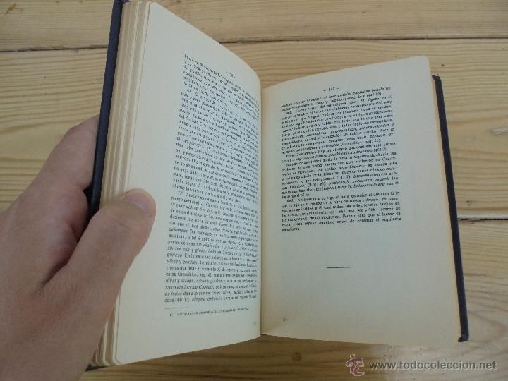 Diccionarios de segunda mano: GRAMATICA BASICA DIALECTAL DEL EUSKERA-MORFOLOGIA VASCA. AZKUE ALTUBE. DICCIONARIO VASCO. ARBELAITZ. - Foto 48 - 51019096