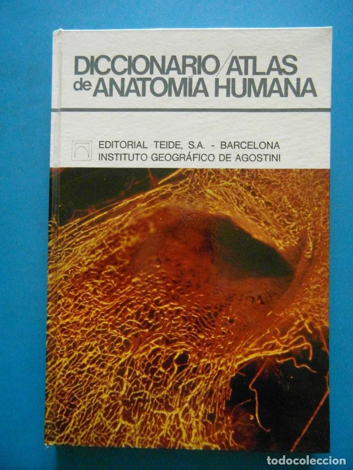 diccionario atlas de anatomia humana. nicola pi - Comprar ...