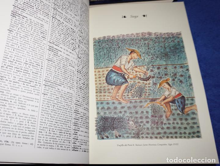 Diccionarios de segunda mano: Diccionario de la lengua española - Real Academia Española - Espasa Calpe (1993) - Foto 4 - 114316639