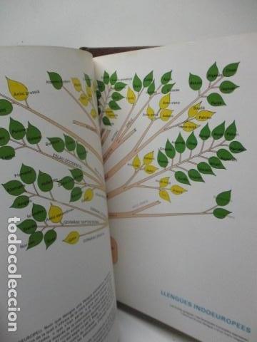 Diccionarios de segunda mano: BIBLIOTECA DEL MIL.LENARI DE CATALUNYA 2 TOMOS - DICCIONARI GENERAL CATALA - MIGUEL ARIMANY - Foto 15 - 119497275
