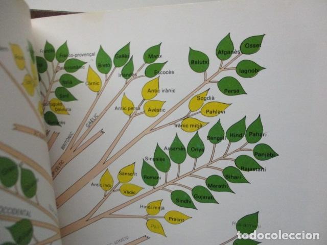 Diccionarios de segunda mano: BIBLIOTECA DEL MIL.LENARI DE CATALUNYA 2 TOMOS - DICCIONARI GENERAL CATALA - MIGUEL ARIMANY - Foto 16 - 119497275