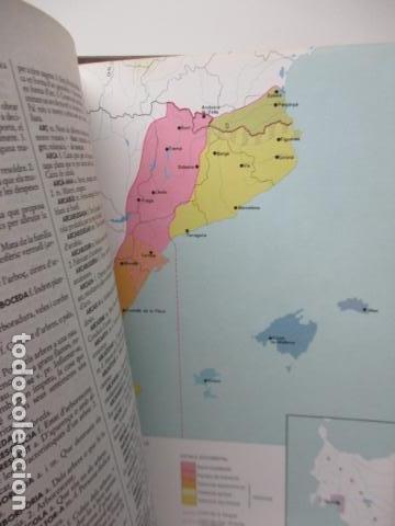 Diccionarios de segunda mano: BIBLIOTECA DEL MIL.LENARI DE CATALUNYA 2 TOMOS - DICCIONARI GENERAL CATALA - MIGUEL ARIMANY - Foto 17 - 119497275