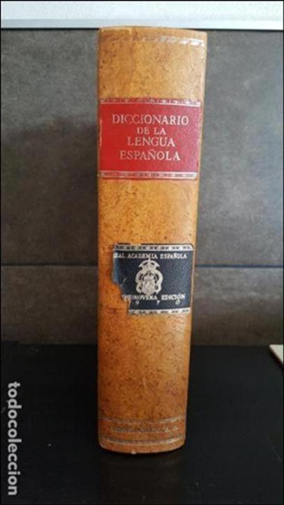 DICCIONARIO DE LA REAL ACADEMIA ESPAÑOLA, DECIMONOVENA EDICION. (Libros de Segunda Mano - Diccionarios)
