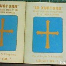 Livros em segunda mão: LA XUNTURA PRIMER DICCIONARIO ENCICLOPEDICU DE LA LLINGUA ASTURIANA PER EL XUGLAR D'ENTREPEÑE 1 Y 2. Lote 163390718
