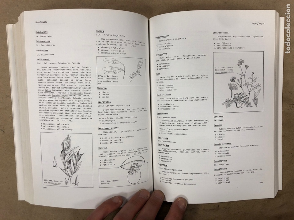 Diccionarios de segunda mano: BIOLOGIA /2 BOTANIKA HIZTEGIA ONDDO ETA LANDAREEN MORFOLOGIA. U.ZE.I. ELKAR 1986. EUSKARAZ.ILUSTRADO - Foto 6 - 174588732
