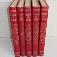 Diccionarios de segunda mano: ENCICLOPÉDIA DE LA VIDA, BRUGUERA. 5 TOMOS.3ª EDICION 1973. Lote 179053541
