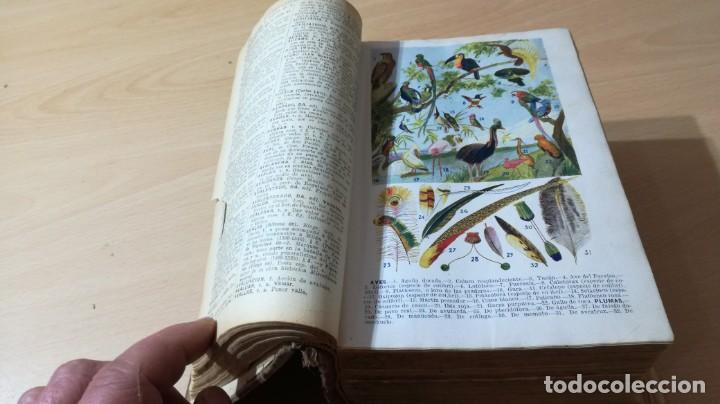 Diccionarios de segunda mano: ENCICLOPEDIDO ILUSTRADO LIMPIDA - FONS - JOSE ALEMAY - SOPENADICCIONARIOM 102 - Foto 10 - 189175070