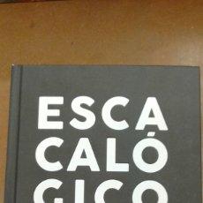 Diccionarios de segunda mano: ESCACALOGICO. DICCIONARIO ENCICLOPEDICO DE CACAS EDT.DIAZ-FAES. NUEVO. Lote 207070091
