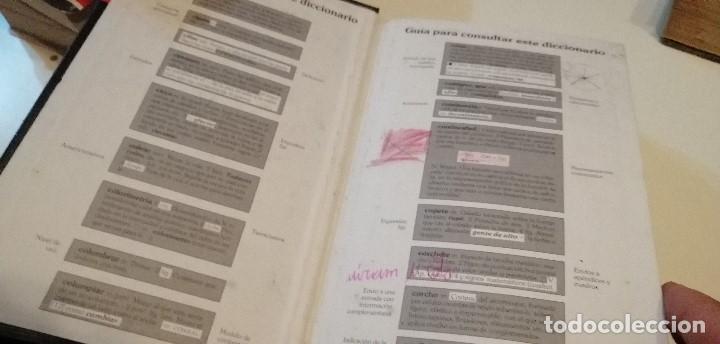 Diccionarios de segunda mano: G-9 DICCIONARIO VOX LENGUA ESPAÑOLA ESCOLAR - Foto 3 - 209724302