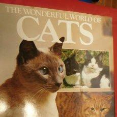 Diccionarios de segunda mano: CATS. JULIA FREEMAN. Lote 212036733