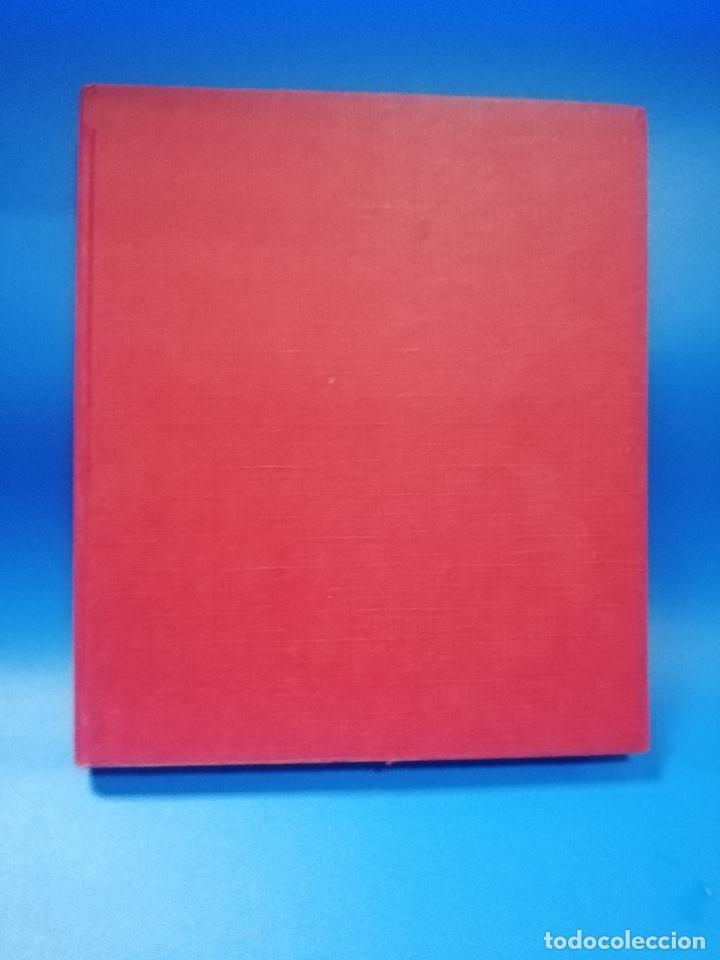 BELLEZA JOVEN. DE LA A A LA Z. DICCIONARIO ILUSTRADO DE LA BELLEZA. A.M.PERIER. 1975. PAGS. 163. (Libros de Segunda Mano - Diccionarios)
