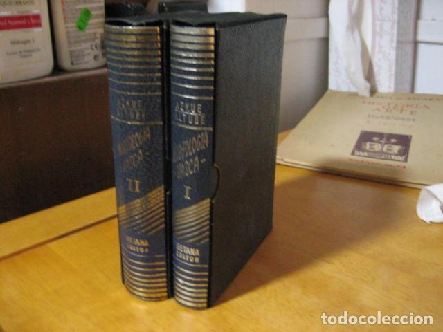 GRAMATICA BASICA DIALECTAL DEL EUSKERA. MORFOLOGIA VASCA. TOMOS 1 Y 2 / AZKUE ALTUBE (Libros de Segunda Mano - Diccionarios)