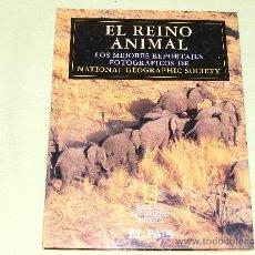 Libros de segunda mano: 1 LIBRO TAPA DURA - EL REINO ANIMAL LOS MEJORES REPORTAJES FOTOGRAFICOS DE NATIONAL GEOGRAPHIC SOCIE. Lote 33741296