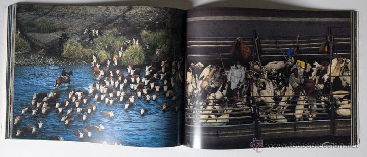 Libros de segunda mano: La Terra Des Del Cel Fotografies De Yann Arthus-Bertrand DESCATALOGADO - Foto 4 - 40326075