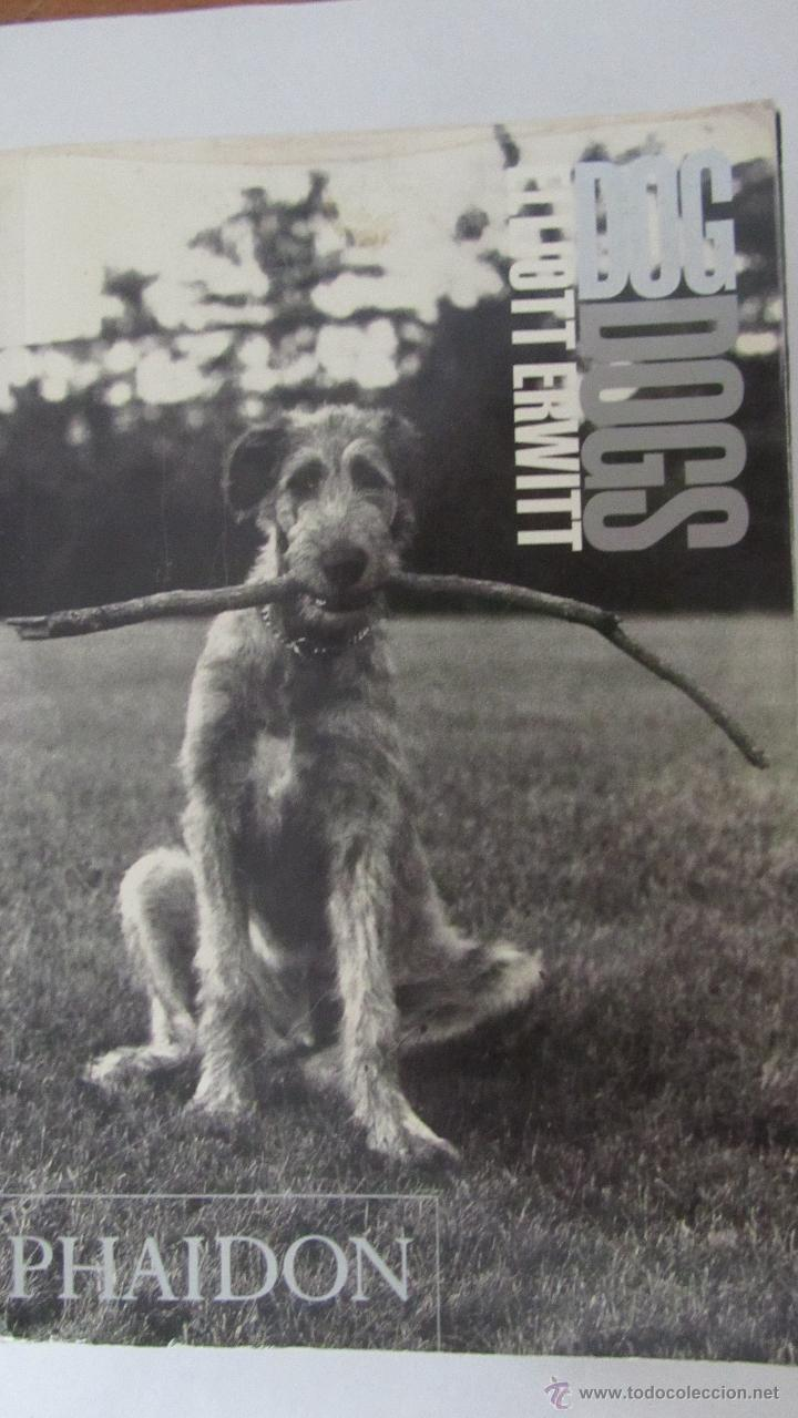 DOG DOGS DE ELLIOTT ERWITT (PHAIDON) (Libros de Segunda Mano - Bellas artes, ocio y coleccionismo - Diseño y Fotografía)