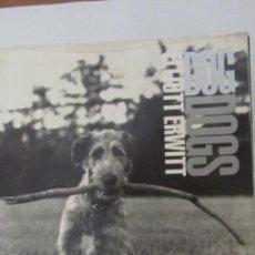 Libros de segunda mano: DOG DOGS DE ELLIOTT ERWITT (PHAIDON). Lote 51049026
