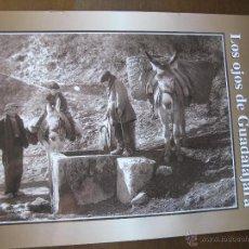 Libros de segunda mano: TOMÁS CAMARILLO. LOS OJOS DE GUADALAJARA. FASCÍCULO Nº 12. EDICIONES GUADALAJARA 2000. AÑO. 2001.. Lote 46626218
