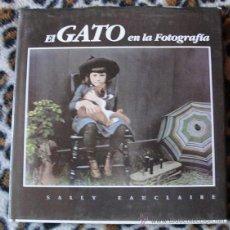 Livres d'occasion: EL GATO EN LA FOTOGRAFÍA - SALLY EAUCLAIRE -. Lote 54711753