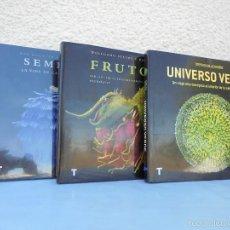 Libros de segunda mano: ROB KESSELER. WOLFGANG STUUPY. STEPHEN BLACKMORE. FRUTOS. SEMILLAS. UNIVERSO VERDE. VER FOTOGRAFIAS.. Lote 58254813
