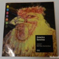 Libros de segunda mano: AMERICA SANCHEZ .- RUBEN FONTANA; DANIEL GIRALT-MIRACLE , 1993 : DISEÑO GRAFICO DESIGN. Lote 68665397