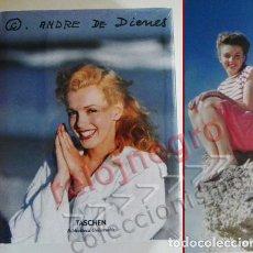 Libros de segunda mano: MARILYN MONROE ANDRE DE DICENS - LIBRO CIENTOS DE FOTOS ACTRIZ MODELO CINE TASCHEN FOTOGRAFÍA NUEVO. Lote 70162533