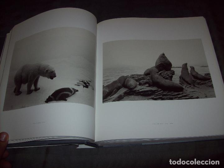 Libros de segunda mano: HIROSHI SUGIMOTO. KERRY BROUGHER & DAVID ELLIOTT. HIRSHHORN MUSEUM AND SCULPTURE GARDEN. 2006. - Foto 14 - 95715939