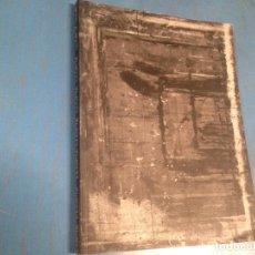 Libros de segunda mano: LIBRO ARTE PINTURA LLOPIZ LLOPIZ. Lote 101558471