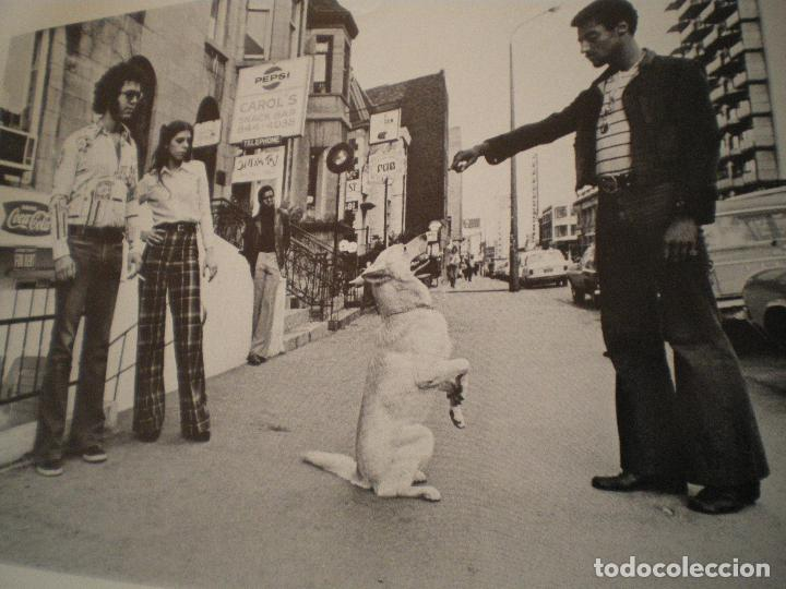Libros de segunda mano: UN DIA LLEGAMOS A LA CALLE 1972 PASCUAL LENNAD - Foto 7 - 101682143