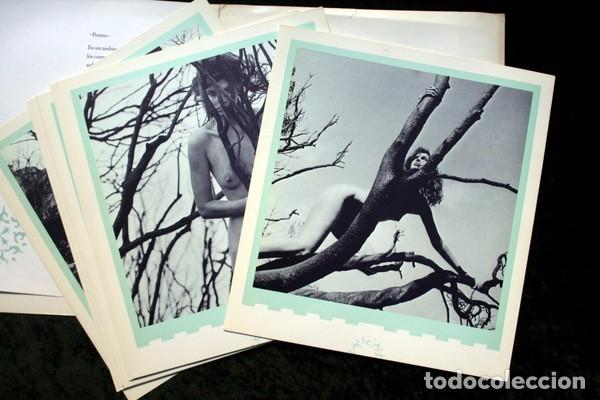 Libros de segunda mano: XAVIER GUARDANS - MONTSERRAT - 12 FOTOGRAFIAS - POEMA JESUS FERRERO - Diseño de John Warwicker RARO - Foto 2 - 102775211