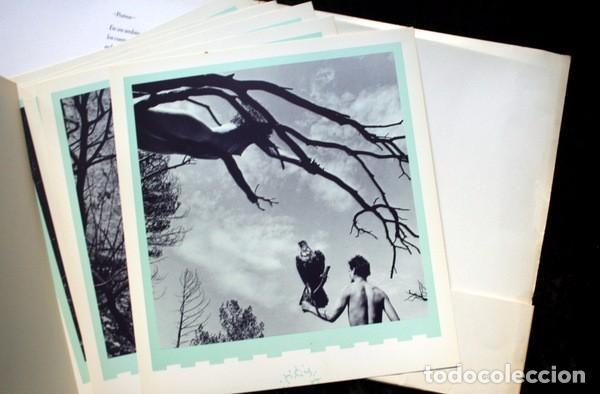 Libros de segunda mano: XAVIER GUARDANS - MONTSERRAT - 12 FOTOGRAFIAS - POEMA JESUS FERRERO - Diseño de John Warwicker RARO - Foto 6 - 102775211