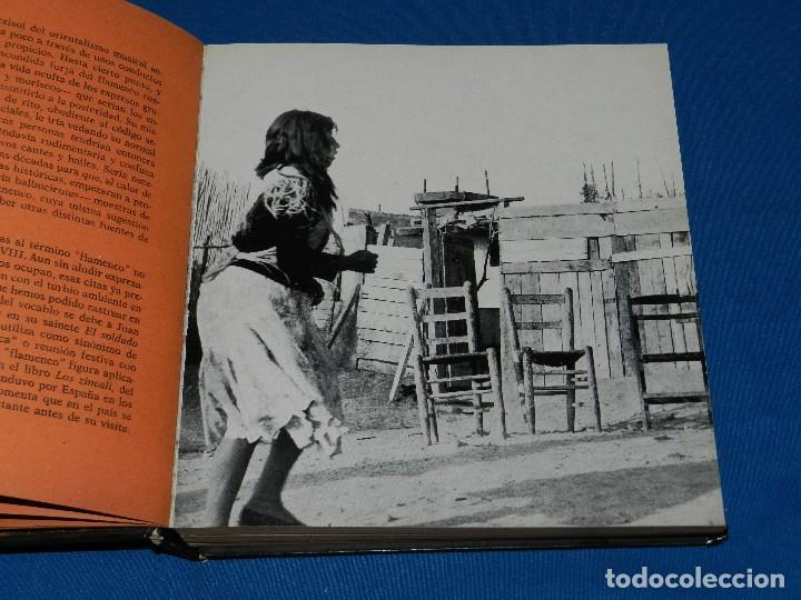 Libros de segunda mano: (MF) LUCES Y SOMBRAS DEL FLAMENCO, FOTOGRAFÍAS DE COLITA, LUMEN ED. 1975. 21X23 CM - Foto 4 - 115217927