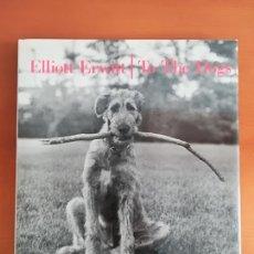 Libros de segunda mano: TO THE DOGS - ELLIOTT ERWITT - PERRO EL MEJOR AMIGO DEL HOMBRE PERROS. Lote 118273411