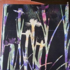 Libros de segunda mano: IMATGES FOTOGRAFIA CATALANA - 8ª PRIMAVERA FOTOGRÁFICA 1996.. Lote 122658235