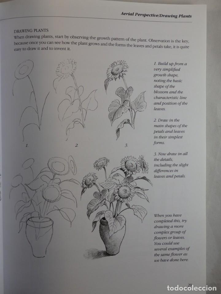 Libros de segunda mano: THE FUNDAMENTALS OF DRAWING. BARRINGTON BARBER. CURSO DE DIBUJO PROFESIONAL. TEXTO EN INGLÉS - Foto 3 - 132002606