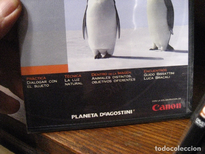 Libros de segunda mano: CURSO DE FOTOGRAFIA DIGITAL EN DVD 40 DE AGOSTINI - Foto 18 - 137443662