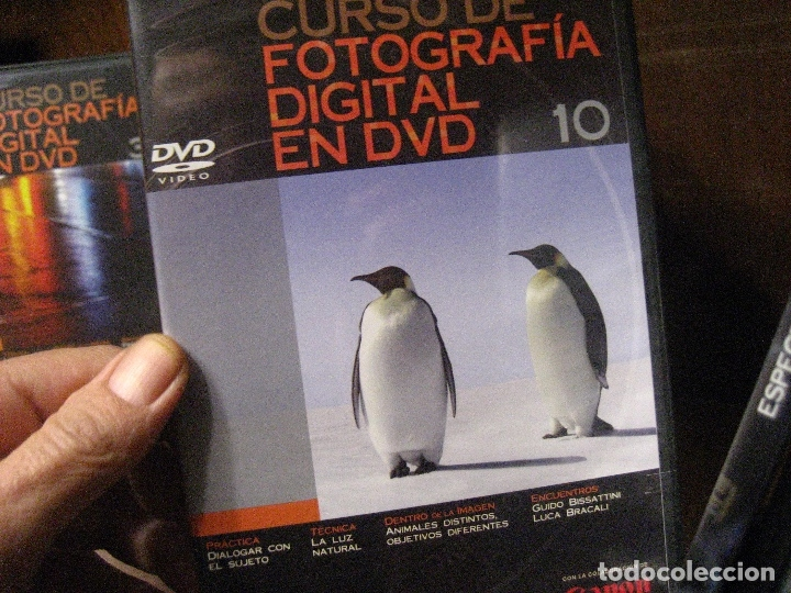 Libros de segunda mano: CURSO DE FOTOGRAFIA DIGITAL EN DVD 40 DE AGOSTINI - Foto 19 - 137443662