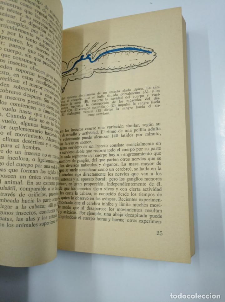 Libros de segunda mano: 58 PASOS SEGUROS PARA HACER MEJORES FOTOGRAFÍAS. - FRANCISCO SORIANO BAUTISTA. TDK65 - Foto 2 - 139893334