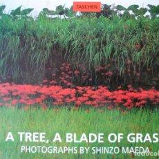 Libros de segunda mano: A TREE A BLADE OF GRASS - PHOTOGRAPHS BY SHINZO MAEDA. Lote 146370174